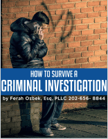 How To Survive A Criminal Investigation by Ferah Ozbek Cover